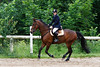Krenkova Katerina na koni Kent 6