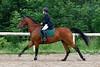 Nemec Tomas na koni April Obrovsky