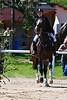 Jarosova Vaclava na koni Casey