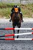 Jezkova Patricie na koni Varieta 1