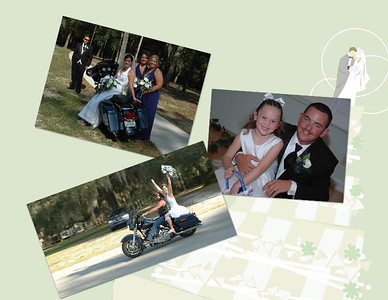 Special 3 pic collage  Can choose any 3 pics and add a background call 386-364-1213 or email Kzphoto@alltel.net