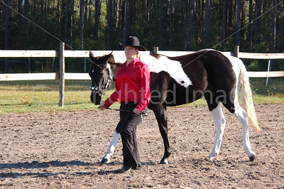 Ft  White Horse Show D-n-T  10-26-08 017