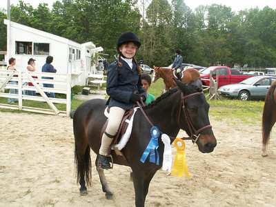 Meadows Horse Shows