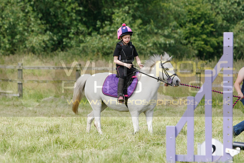 Royston horse and pony club show 22nd June 2014