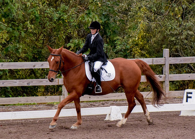 Patty Weston on Butters - April Stieh Horse