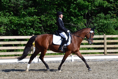 Rythym & Blues Equestrian Recognized Show