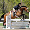Horse Shows and Events : 1 gallery with 38 photos