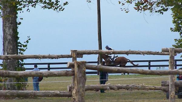 WEG 2010 Cross Country