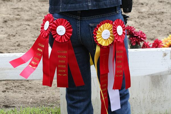 070610 Crickerbrook Horse Show - CHSA