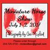 Bev Miniature Horse show copy
