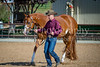 Color & Gelding classes-168