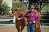 Color & Gelding classes-169