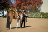 Color & Gelding classes-102