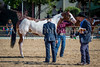 Color & Gelding classes-158
