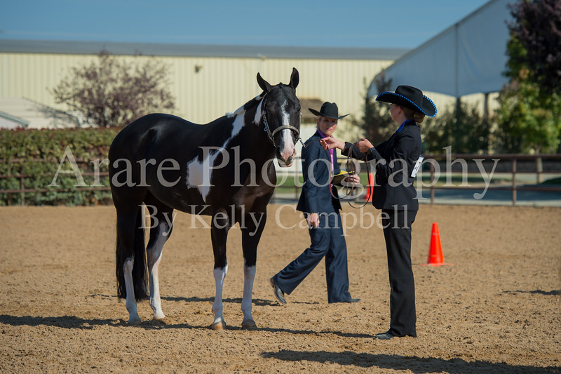 SPHS Youth Mares-159