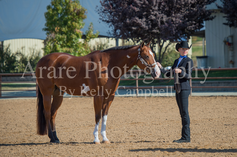 SPHS Youth Mares-127