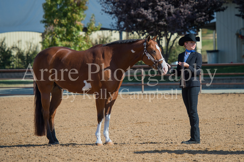 SPHS Youth Mares-123