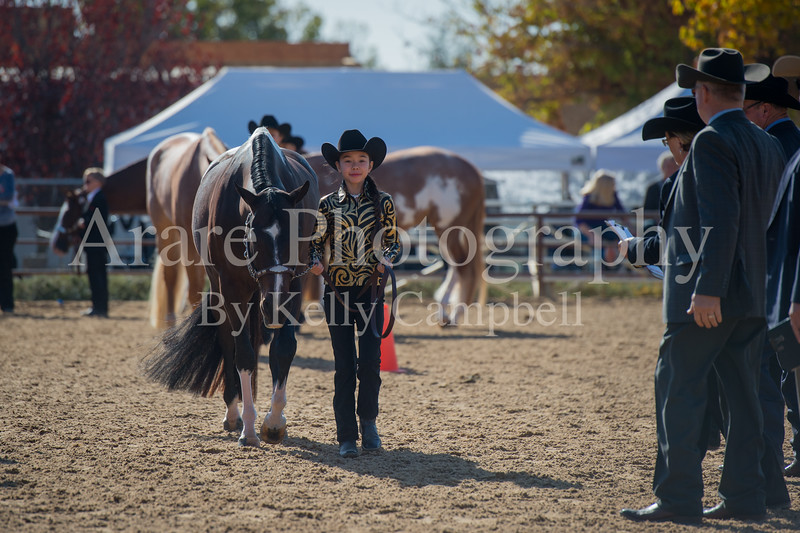 SPHS Youth Mares-102