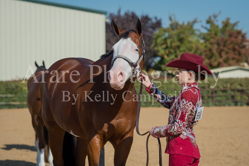 SPHS Youth Mares-168