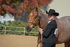 SPHS Youth Mares-138