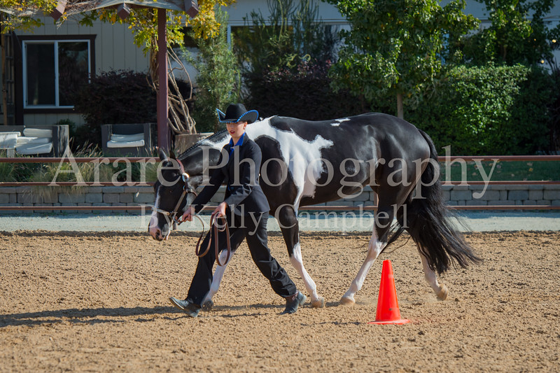 SPHS Youth Mares-146