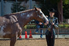 SPHS Youth Mares-117