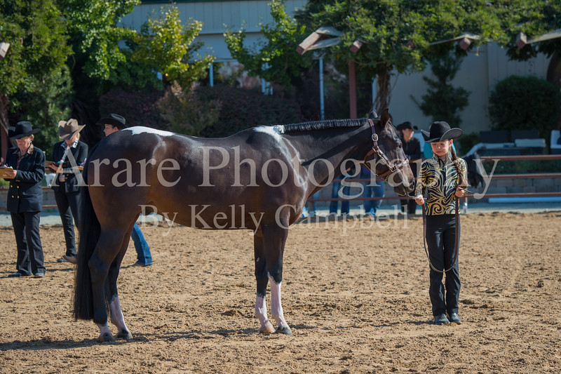 SPHS Youth Mares-130