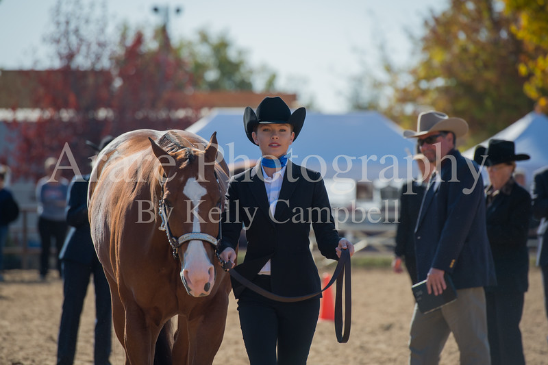SPHS Youth Mares-111