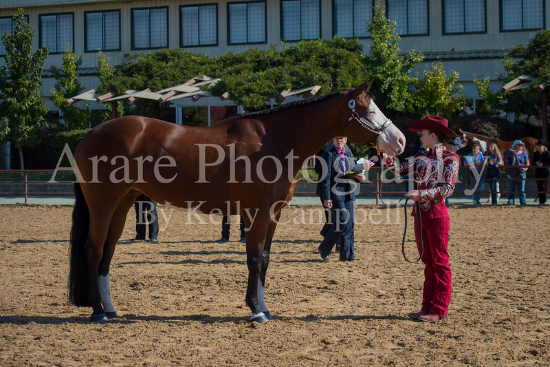 SPHS Youth Mares-167