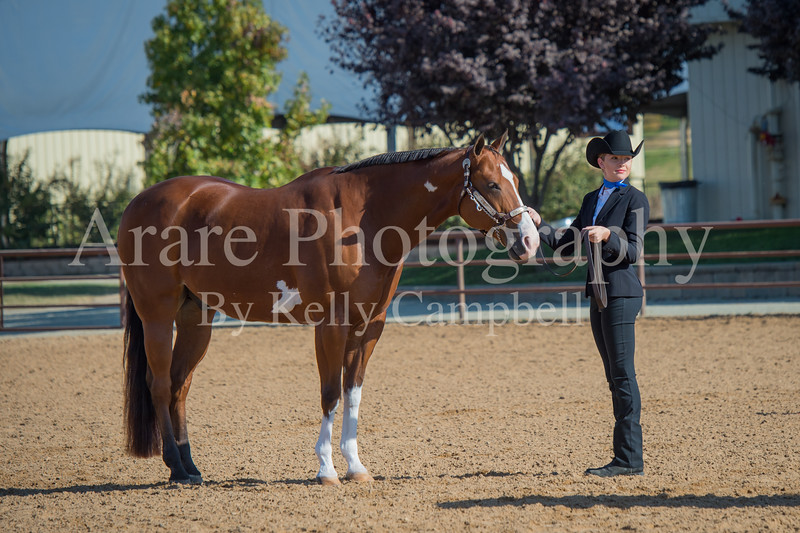 SPHS Youth Mares-126