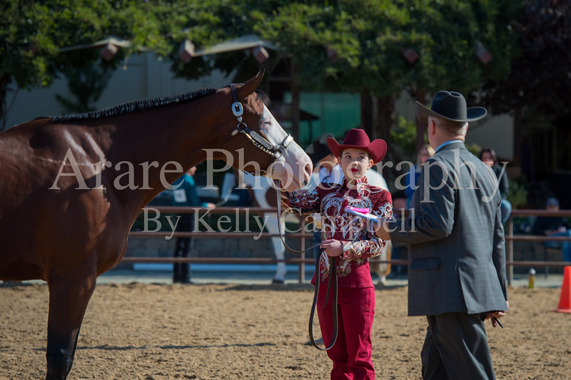 SPHS Youth Mares-157
