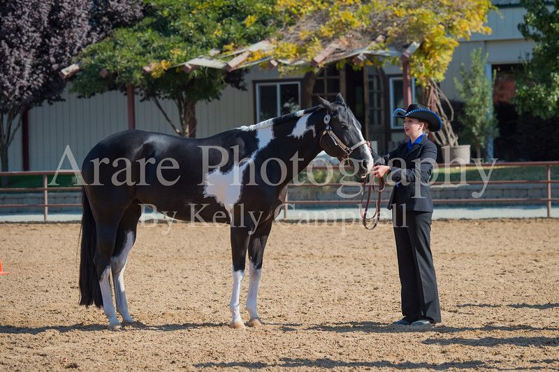 SPHS Youth Mares-152