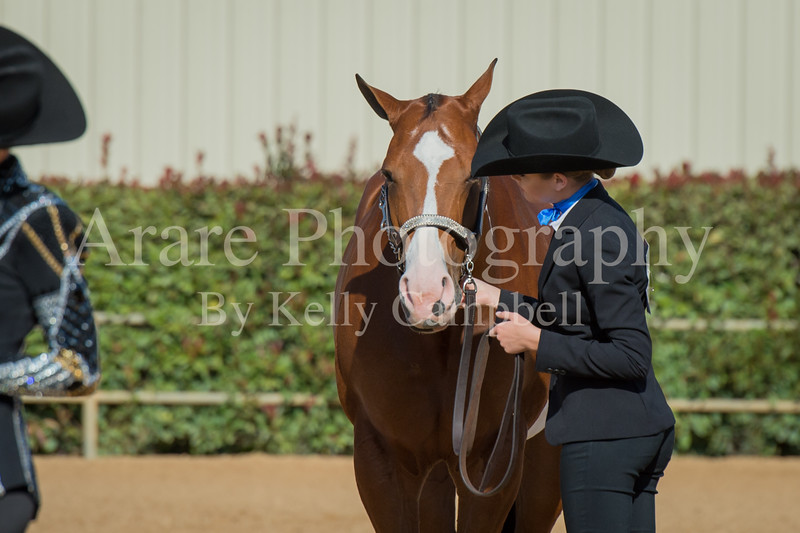 SPHS Youth Mares-137