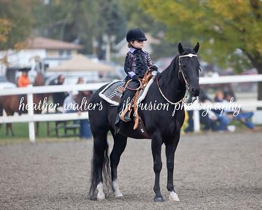 4H Horse Show 2012