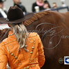 Horse Shows : 19 galleries with 3708 photos