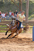 Horse Shows : 7 galleries with 2008 photos