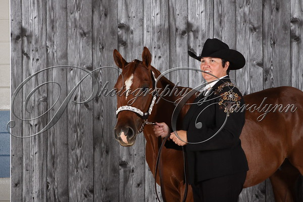 2014 All Breed Show