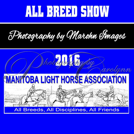 2016 All Breed Show