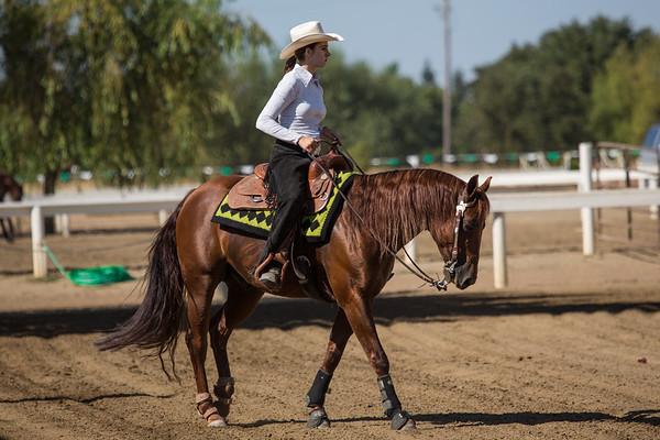 Brookside NRHA Summer Rein Horse Show
