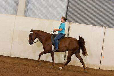 32 - Intermediate Equitation Eng/Wes 2 gait