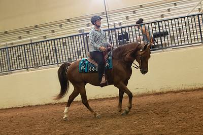 35 - WH Country Pleasure AOT Eng/Wes 2 gait