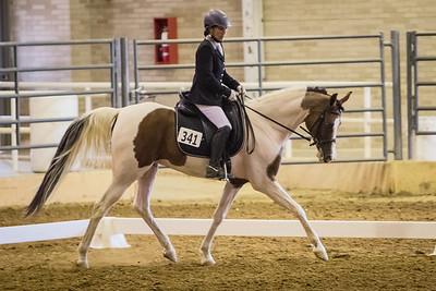 Arabian Horse Club of Texas
