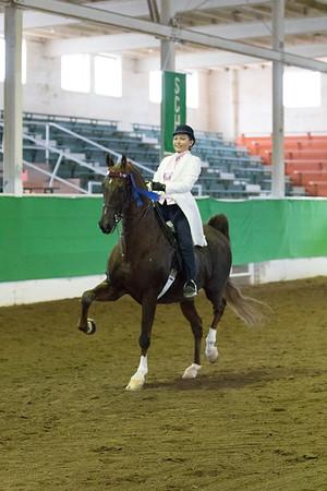 Salina Charity Horse Show