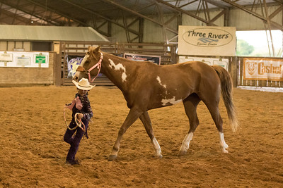27 - Youth Mares Halter