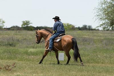 Paint Performance Horse Super Stakes - April 28-29, 2018