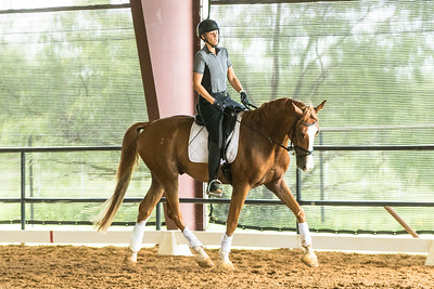 Valhalla Equestrian