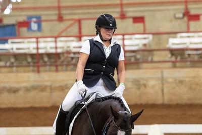 Horse 202