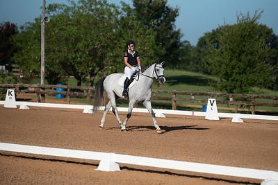 Horse 326