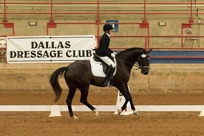 Horse 520