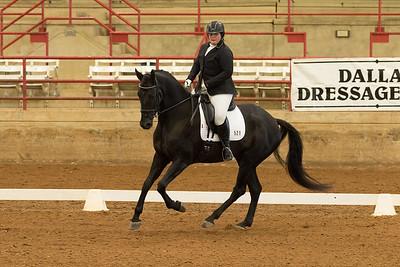 Horse 521